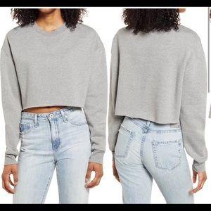 Socialite Cropped Sweatshirt Gray